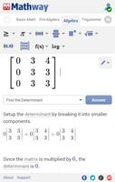 Mathway screenshot 7