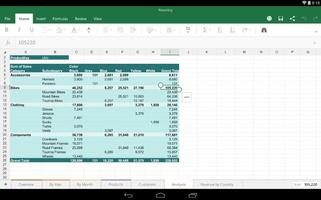 Microsoft Excel screenshot 2