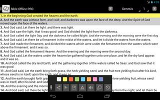 Bible Offline screenshot 19
