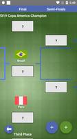 Copa America 2019 Draw Simulator screenshot 5