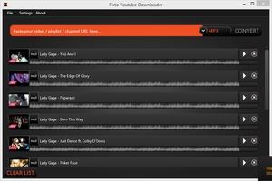 FLVTO Youtube Downloader for Windows screenshot 9