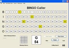 Bingo Caller screenshot 2