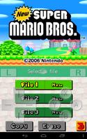 Pretendo NDS Emulator screenshot 6