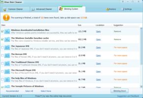 Wise Disk Cleaner screenshot 2