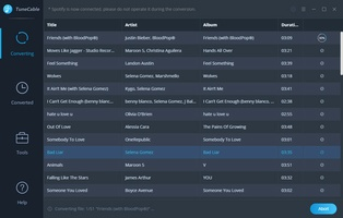 TuneCable Spotify Downloader screenshot 3