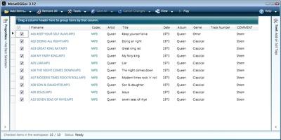 Metatogger screenshot 4