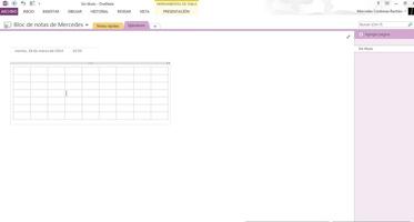 Microsoft OneNote screenshot 2