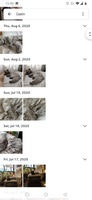 Google Fotos screenshot 9