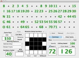 Bingo Caller screenshot 5