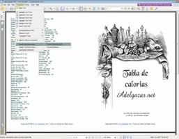 Foxit PDF Reader Portable screenshot 3