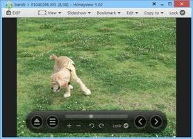 Honeyview screenshot 3