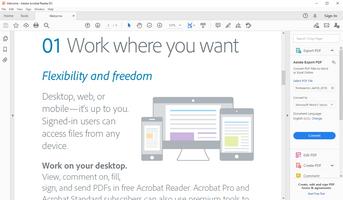 Adobe Acrobat Reader DC screenshot 2