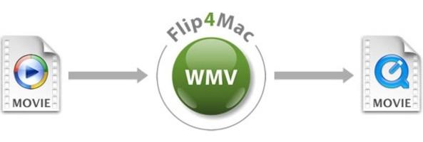 Flip4Mac screenshot 3