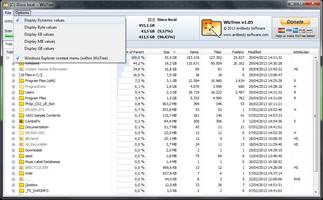WizTree screenshot 5