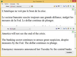 Ace Translator screenshot 5