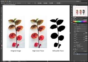 Adobe Creative Suite 6 Master Collection screenshot 5