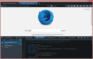 Firefox Developer Edition screenshot 4
