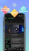 Lark Player screenshot 2