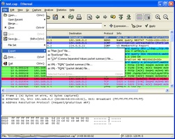 Ethereal screenshot 4