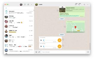 WhatsApp Desktop screenshot 5