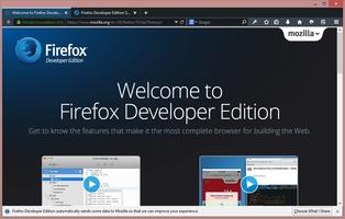 Firefox Developer Edition screenshot 7